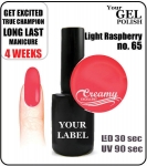 gel polish - smalto - 8ml - Light Raspberry (no. 65)